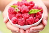 raspberry ketones,raspberry ketone reviews